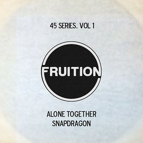 45 Series, Vol. 1 by Fruition