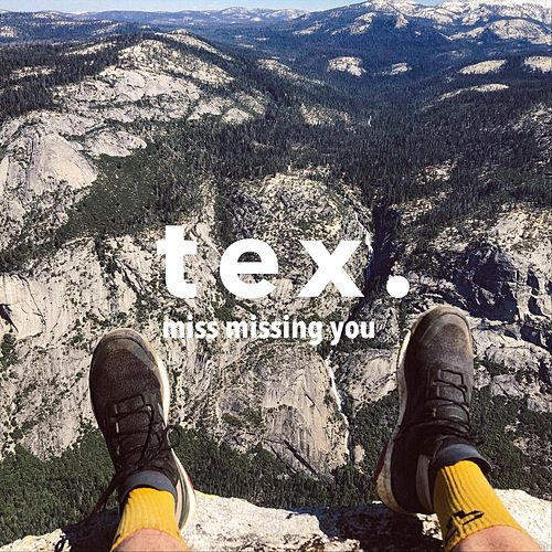 Miss Missing You by Tex