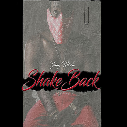 Shake Back by Yung Wizzle
