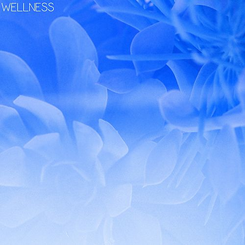 Wellness by Wellness Pur