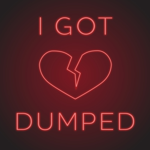 I Got Dumped�� van Various Artists