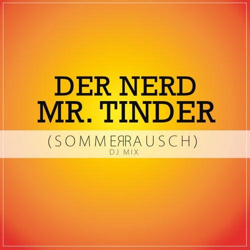 Mr. Tinder (Sommerrausch DJ Mix) de N.E.R.D