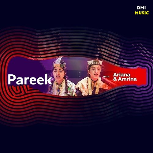 Pareek by Ariana