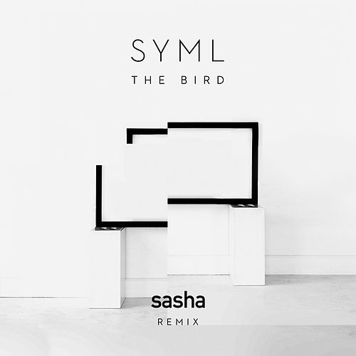 The Bird (Sasha Remix) by SYML