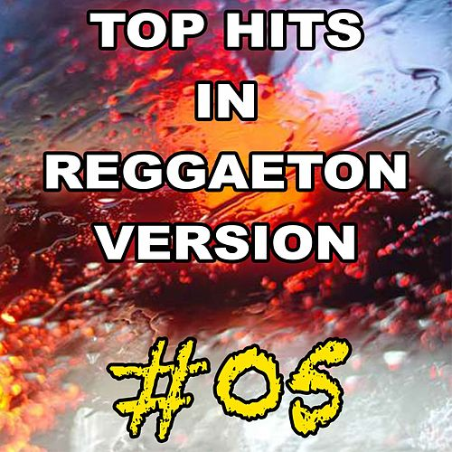 Top Hits in Reggaeton Version, Vol. 5 von Reggaeboot