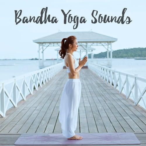 Bandha Yoga Sounds de Various Artists