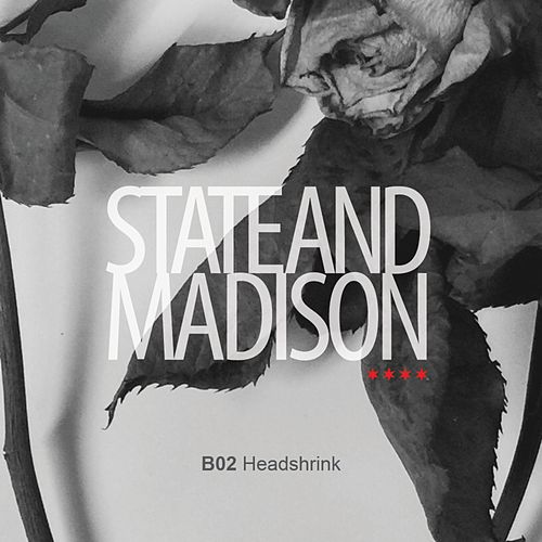 Headshrink by State and Madison