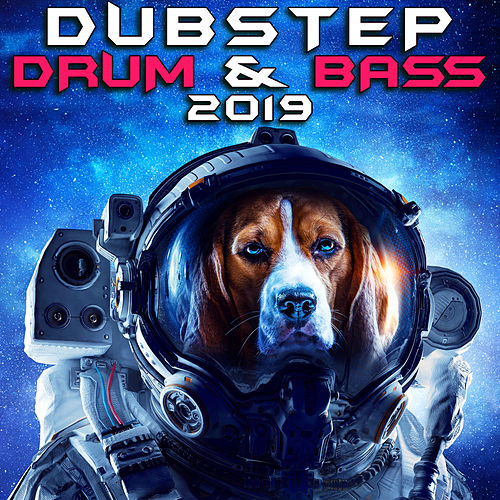 Dubstep Drum & Bass 2019 (3 Hr DJ Mix) von Dubstep Spook