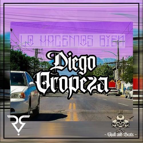 Lo Hacemos Bien by Diego Oropeza