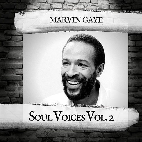 Soul Voices Vol. 2 de Marvin Gaye