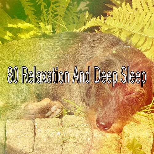 80 Relaxation and Deep Sleep von Best Relaxing SPA Music