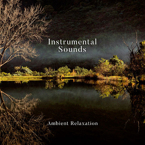 Instrumental Sounds: Ambient Relaxation von Various Artists