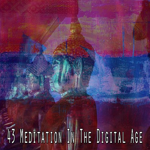 43 Meditation in the Digital Age von Entspannungsmusik