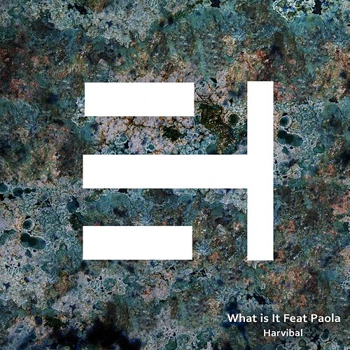 What is It (feat. Paola) de Akeos