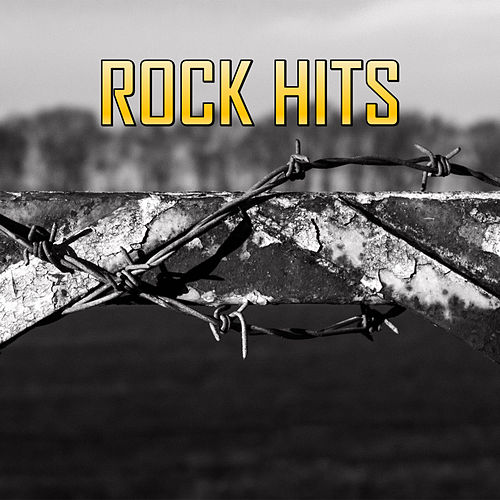 Rock Hits von Various Artists