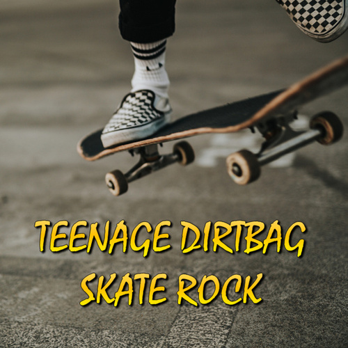 Teenage Dirtbag Skate Rock van Various Artists