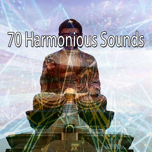 70 Harmonious Sounds de Meditación Música Ambiente
