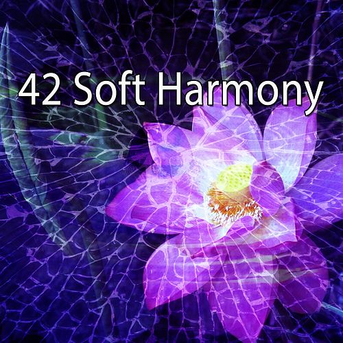 42 Soft Harmony by Asian Traditional Music