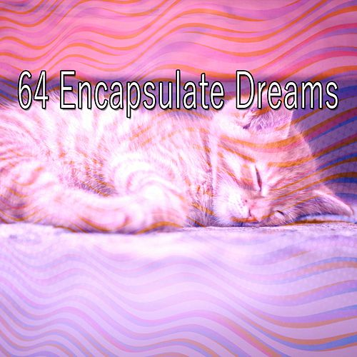 64 Encapsulate Dreams by Trouble Sleeping Music Universe