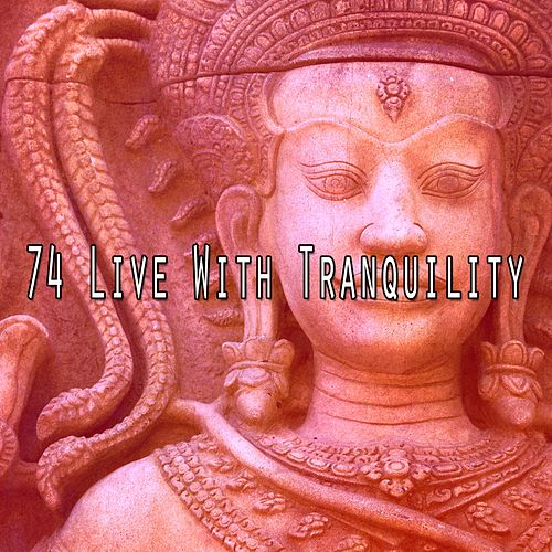 74 Live with Tranquility by Music For Meditation