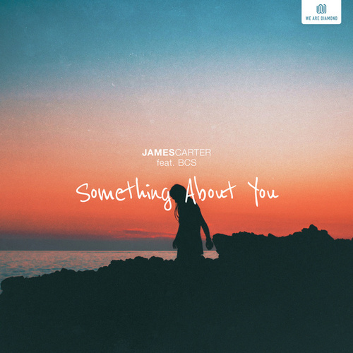 Something About You by James Carter