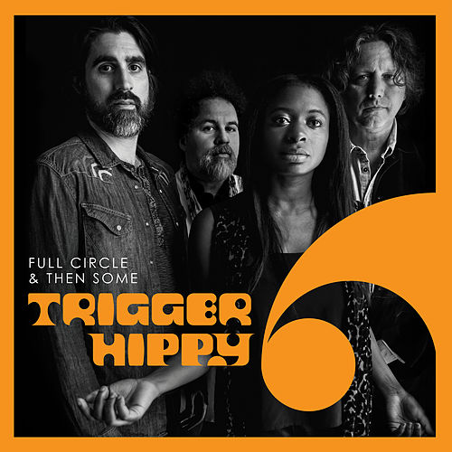 Don't Want to Bring You Down by Trigger Hippy