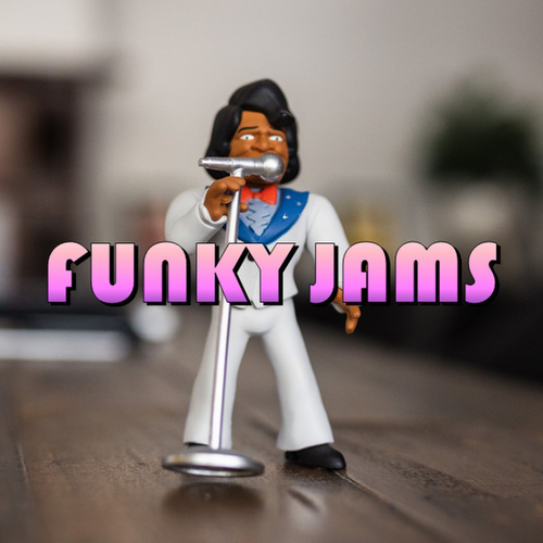 Funky Jams von Various Artists