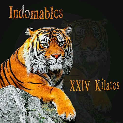 XXIV Kilates de Los Indomables