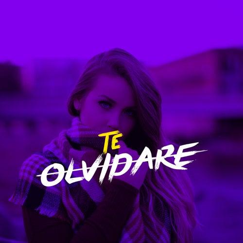 Te Olvidare by El Del Flow Callejero