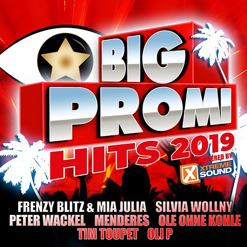 Big Promi Hits 2019 powered by Xtreme Sound von Various Artists