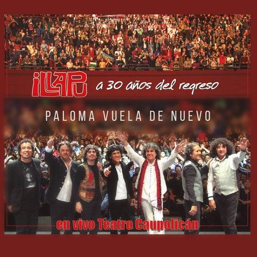 Paloma Vuela de Nuevo (En vivo Caupolicán) de Illapu