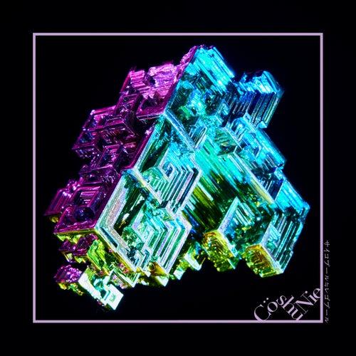Psychopool - Legopool von Cö Shu Nie