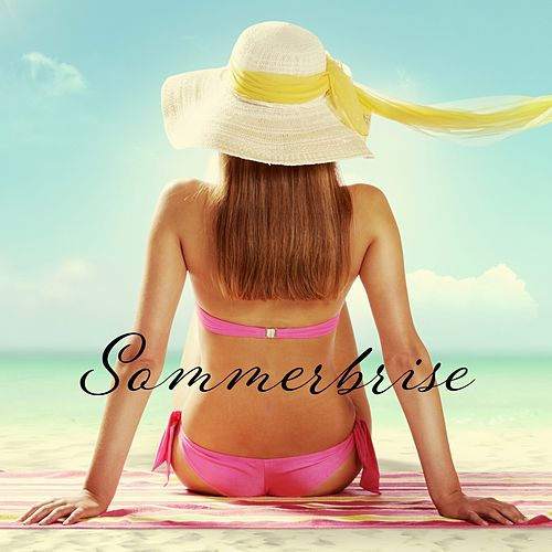 Sommerbrise de Various Artists