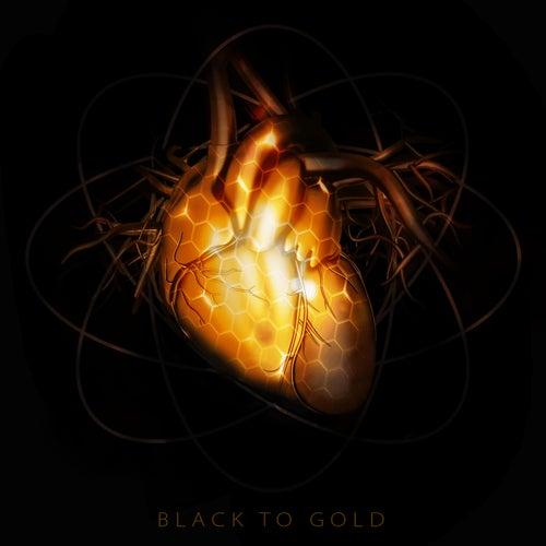 Black to Gold de Black Harbour