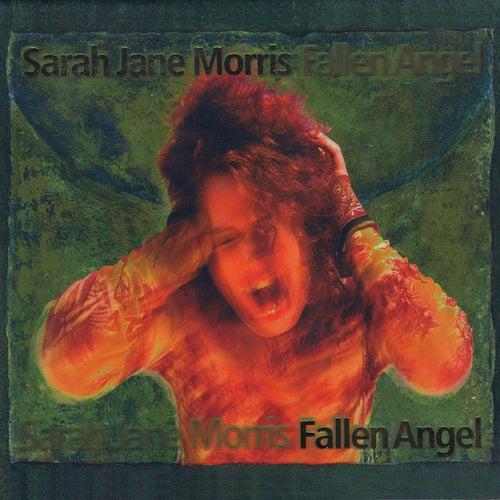 Fallen Angel de Sarah Jane Morris