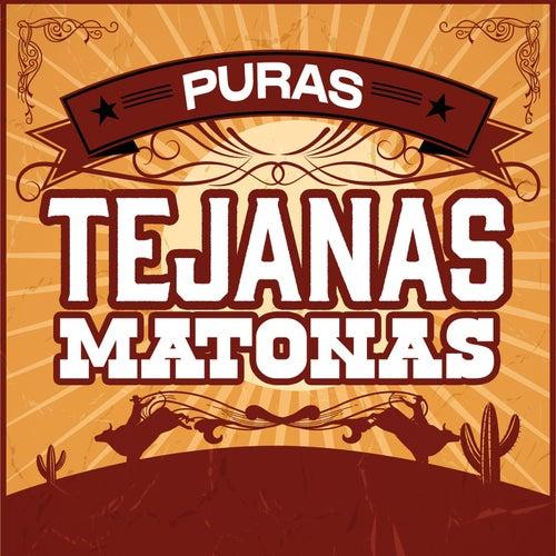 Puras Tejanas Matonas by Various Artists