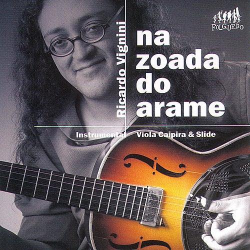 Na Zoada do Arame de Ricardo Vignini