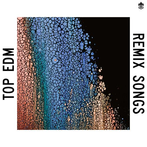 Top EDM Remix Songs by Various Artists