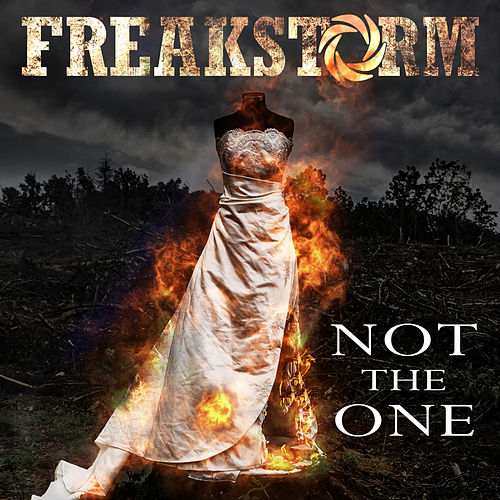 Not The One by Freakstorm