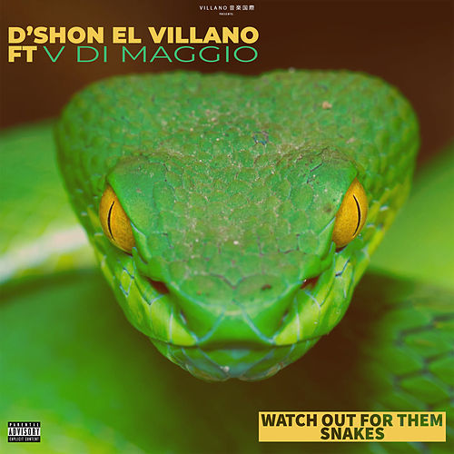 Watch Out for Them Snakes (feat. V Di Maggio) de D'Shon El Villano