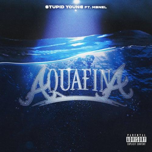 Aquafina (feat. MB Nel) von $tupid Young
