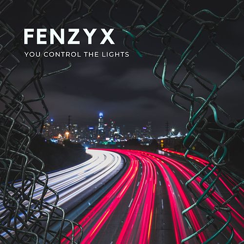 You Control the Lights by The Fenzyx