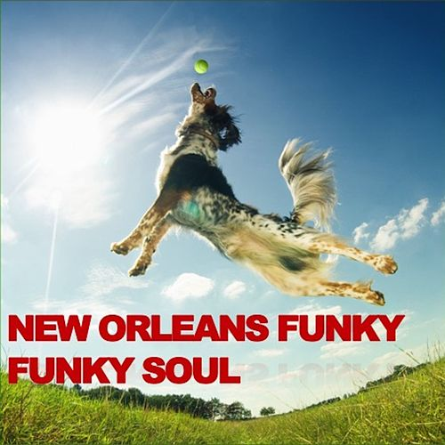 New Orleans Funky Funky Soul de Various Artists