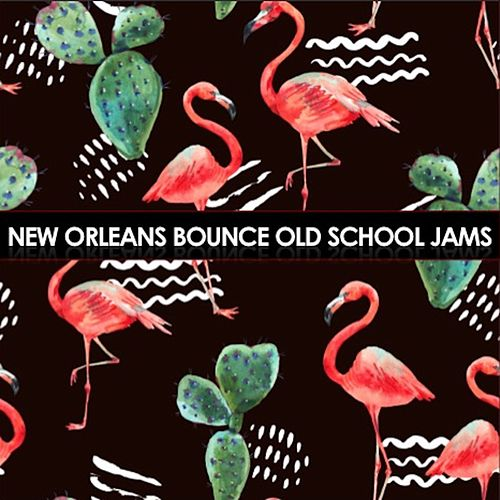 New Orleans Bounce: Old School Jams de Various Artists