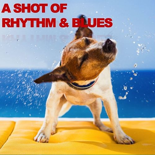 A Shot Of Rhythm & Blues de Various Artists
