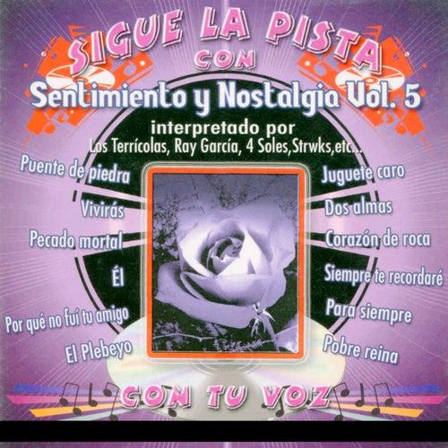 Sigue La Pista Del Sentimiento Y Nostalgia, Vol. V by Silvio Rodriguez