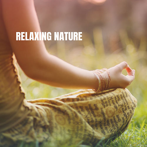 Relaxing Nature by Various Artists
