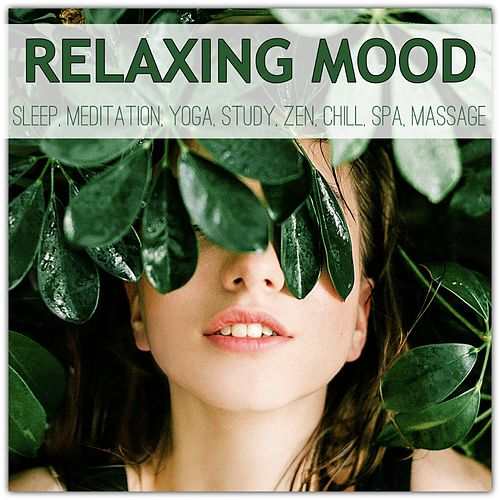 Relaxing Mood: Sleep, Meditation, Yoga, Study, Zen, Chill, Spa, Massage de Various Artists