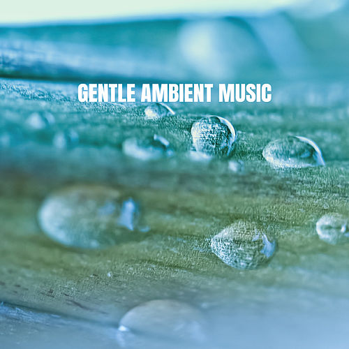 Gentle Ambient Music de Various Artists