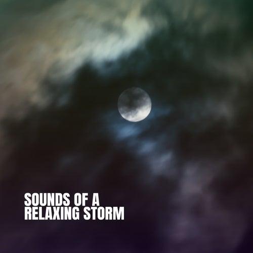 Sounds of a Relaxing Storm de Various Artists